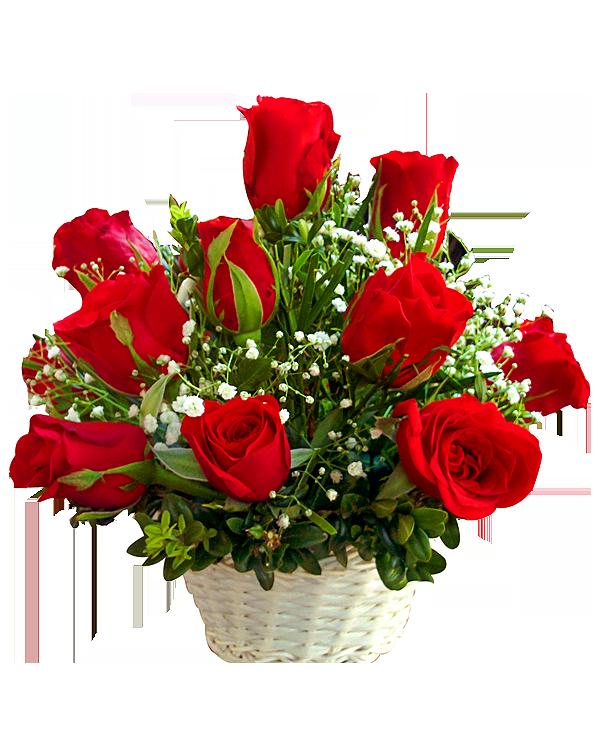 축하 꽃.png