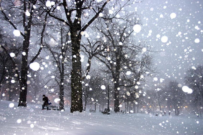 snow_blizzard.jpg